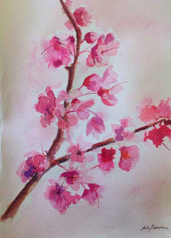 Peach Blossoms  in Colored inks by Jill Freeman
