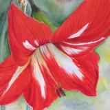 Watercolor by Inge Bronnum
