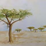 Trees 2 by Joan Davis