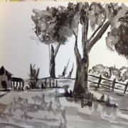Pen and Wash Drawing Lynley  Liepens