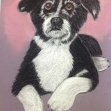 Adorable Millie by Susan Cantrell