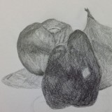 Drawing by Lynley Liepins