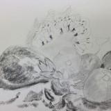 Drawing by Sjoukje Tarbox