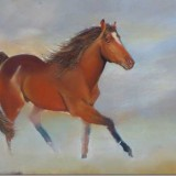 Horse by Vicki