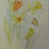 Watercolor by Joan Davis