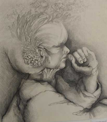 Pencil Drawing from Art Classes Perth by Val Shaw