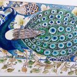 Peacock. Watercolour and pen