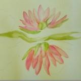 Waterlilies in watercolour/work in progress