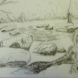 Using line only to develop expressive line and tonal values